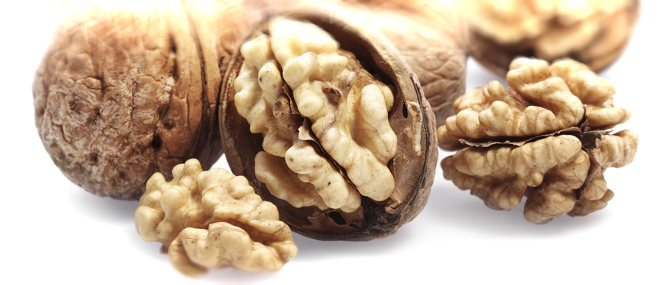walnutbanner